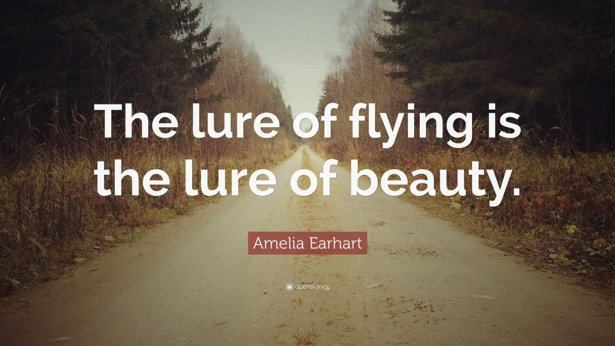 30 Flying Quotes To Inspire You On Your Journey Through Flight